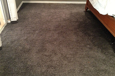 Drying Carpet After Professional Cleaning